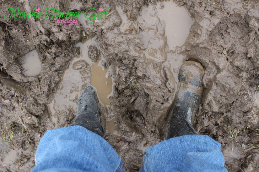 Boots in the mud.jpg
