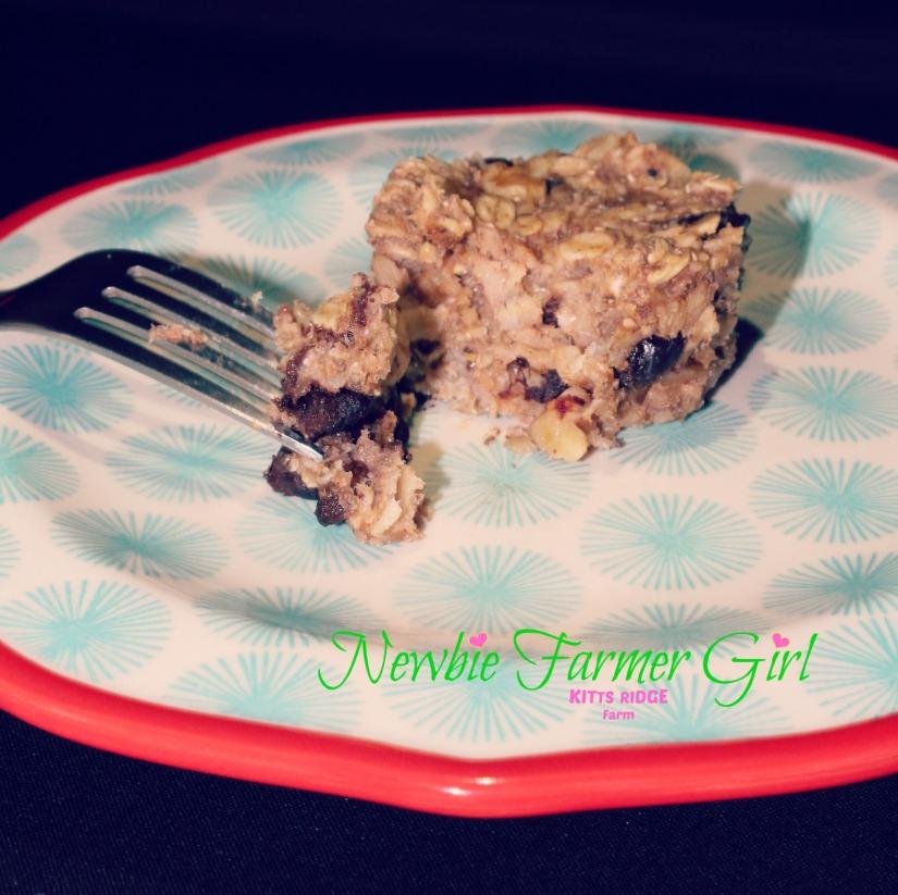 Chia Oatmeal Muffin.jpg