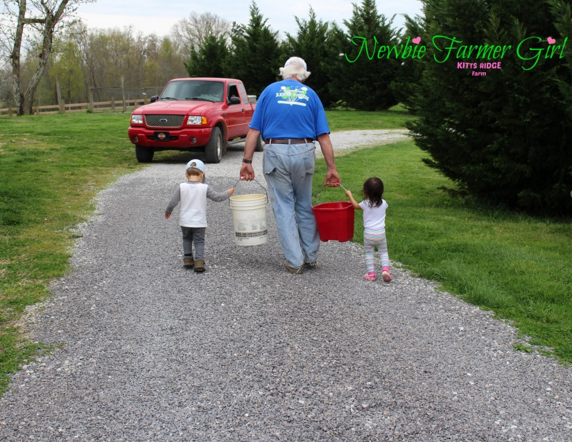 Papaw's little Helpers.jpg