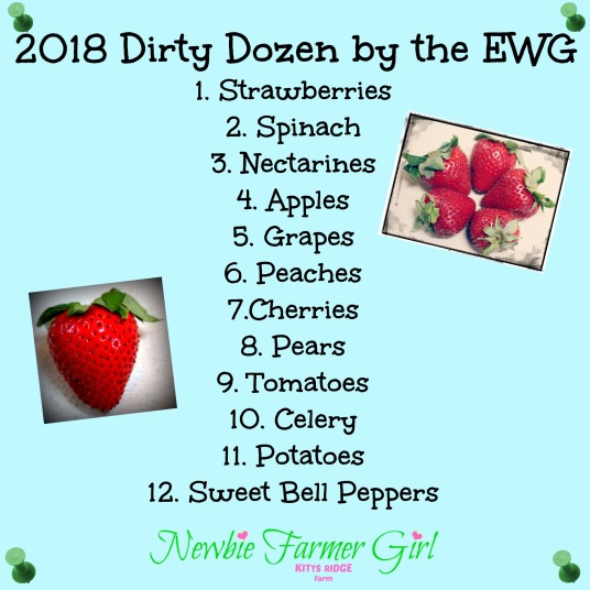 The Dirty Dozen 2018
