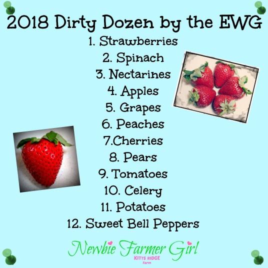 The Dirty Dozen 2018