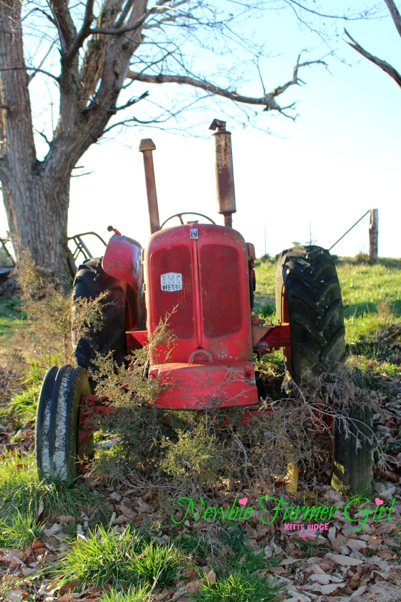 front of run down tractor